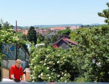 Nordhausen - Blick von der Terrasse des Felix